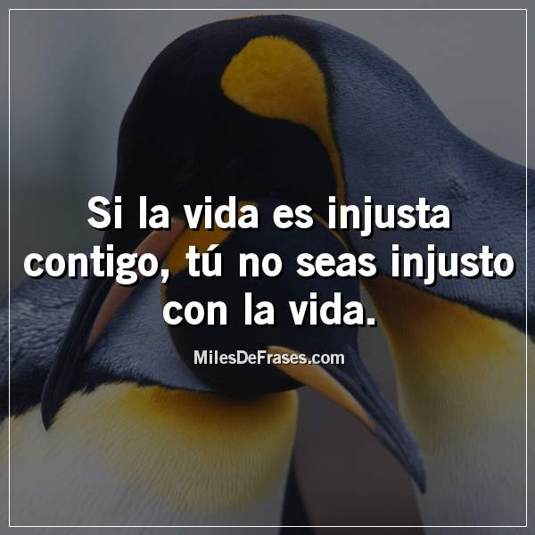 Si la vida es injusta contigo, tú no seas injusto con la vida.