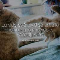 La vida está dividida entre lo horrible y lo miserable. -Woody Allen