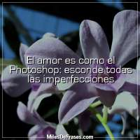 El amor es como el Photoshop: esconde todas las imperfecciones